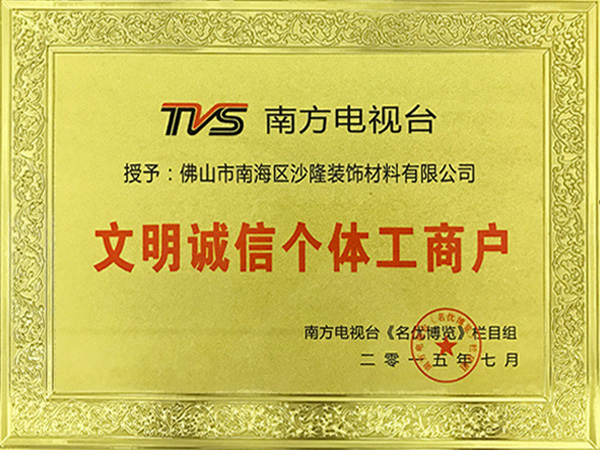 沙隆装饰-TVS南方电视台文明诚信个体工商